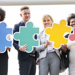 TEAM l'équipe d'entrepreneurs